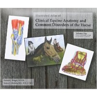 Illustrated Atlas of Clinical Equine Anatomy Vol. 1