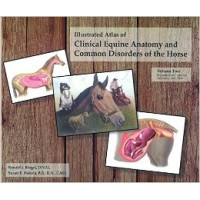 Illustrated Atlas of Clinical Equine Anatomy Vol. 2